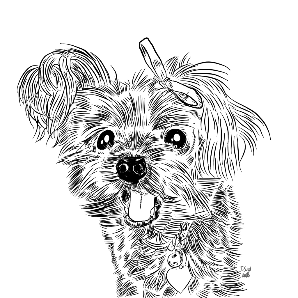 Custom dog illustration