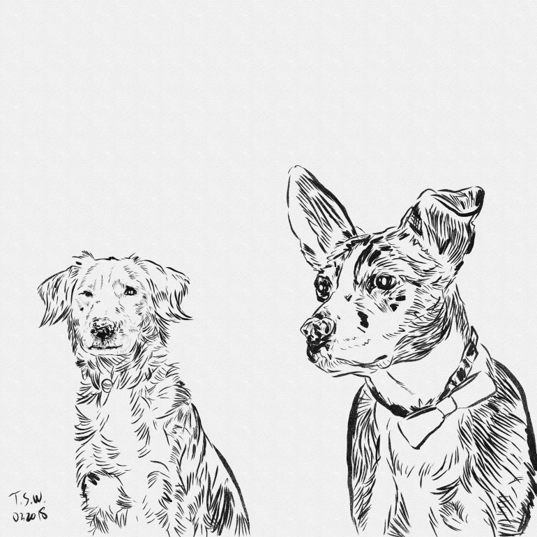 Drawing a couple of dogs