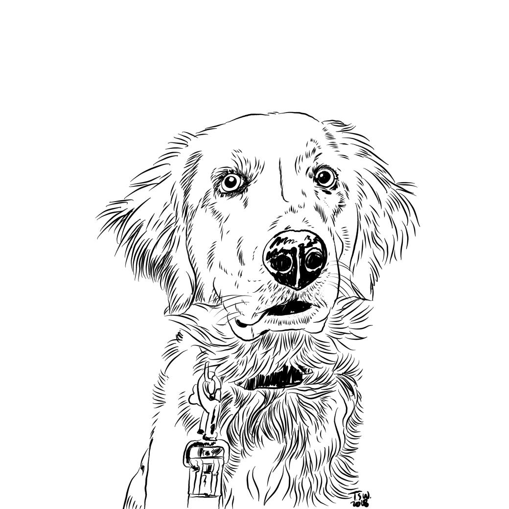 Custom dog illustration
