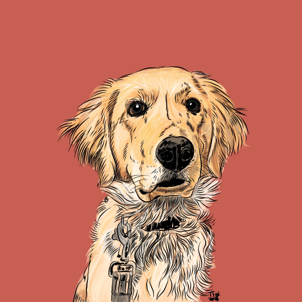 Golden illustration