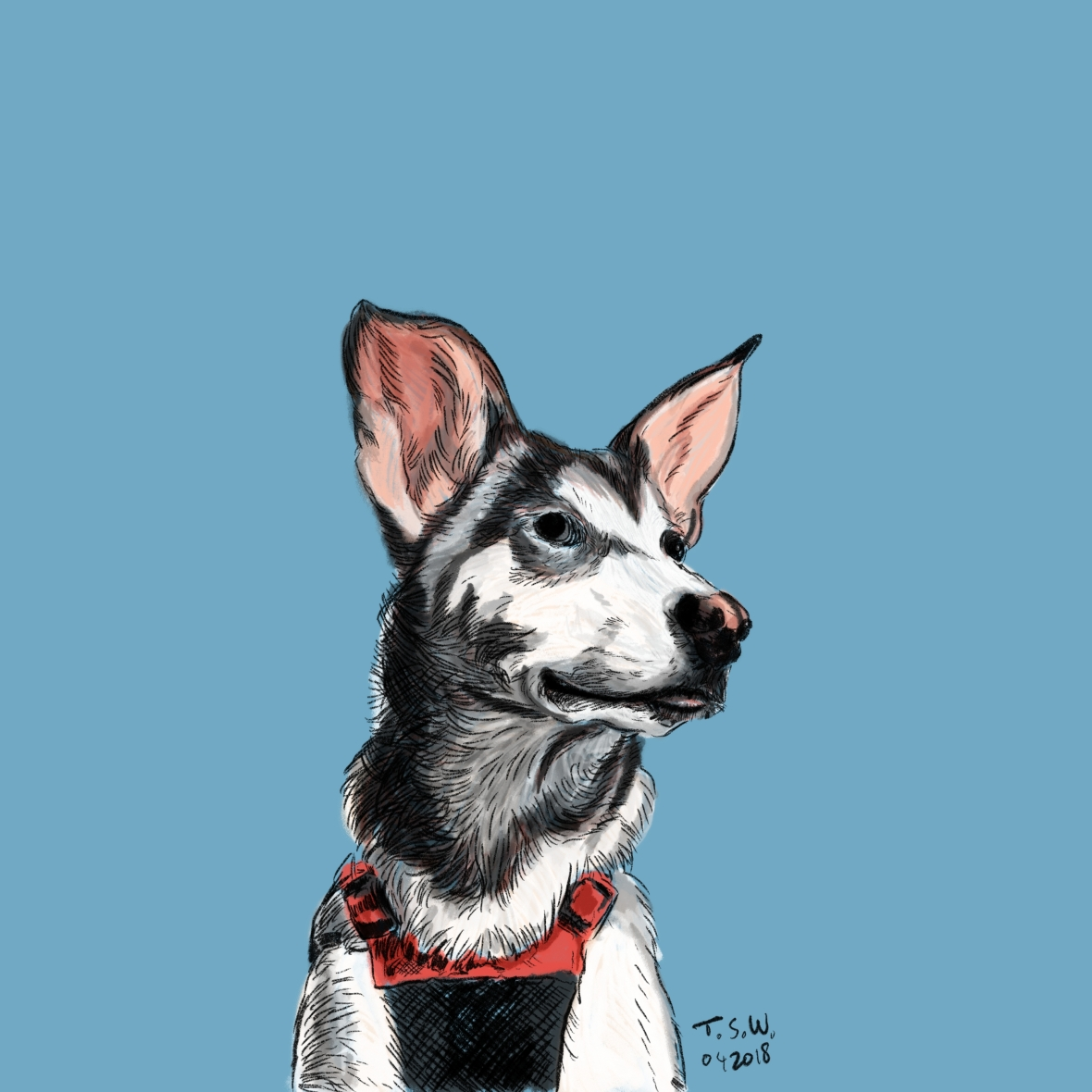 Custom dog drawing