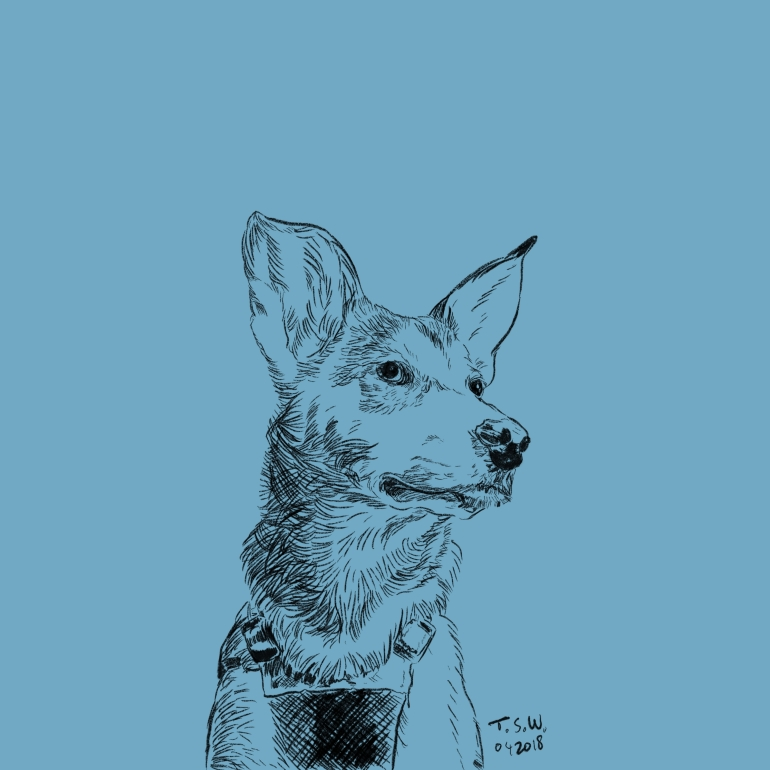 Custom dog drawing