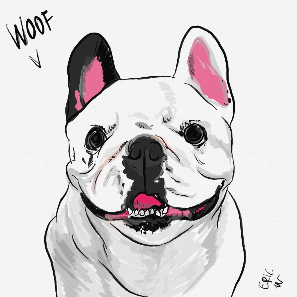 Dog drawing nimbus boo boo